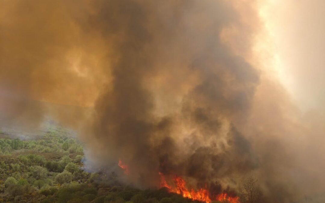 La Junta alerta del riesgo alto de incendios hasta el viernes